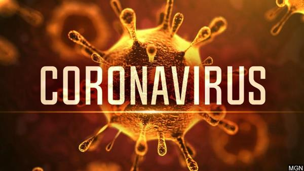 School Closure Due to Coronavirus - COVID-19